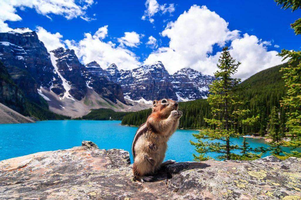 Banff, Canadian Rockies
