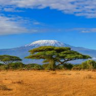 Climbing Mount Kilimanjaro - National Geographic Expeditions