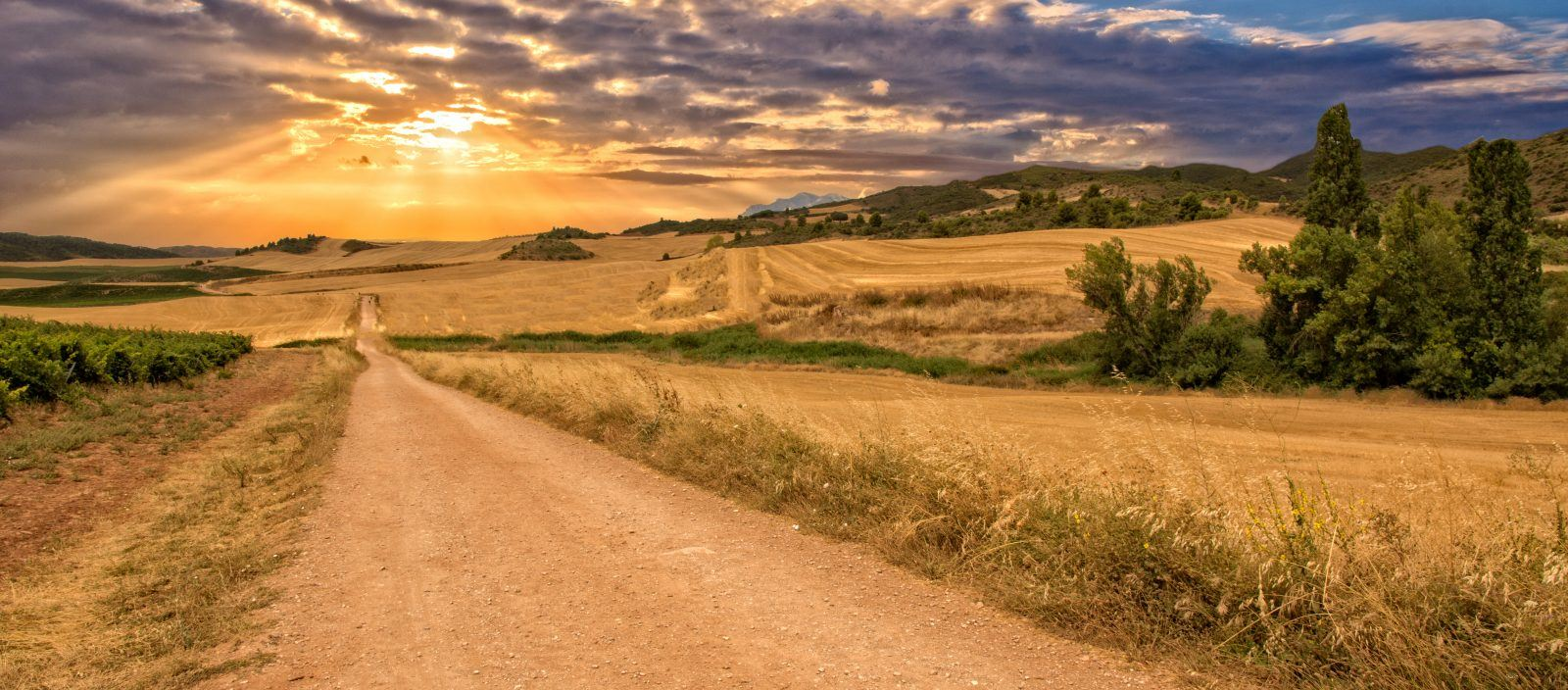 Spain: Walking the Camino de Santiago