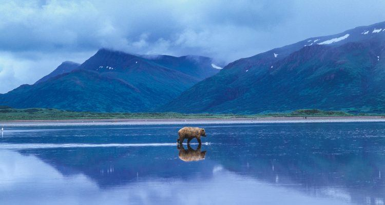 Hidden Alaska: 10 Surprises for Travelers on the Final Frontier - National Geographic Expeditions