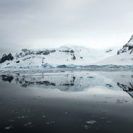 Emblematic Antarctica | National Geographic Expeditions
