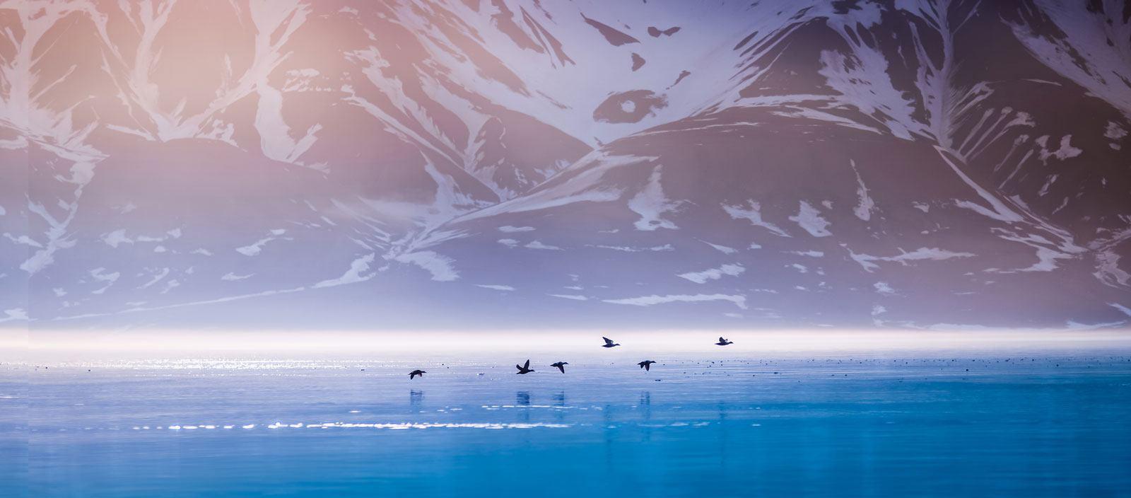 Arctic, Pristine Spitsbergen: from Longyearbyen to Tromsø