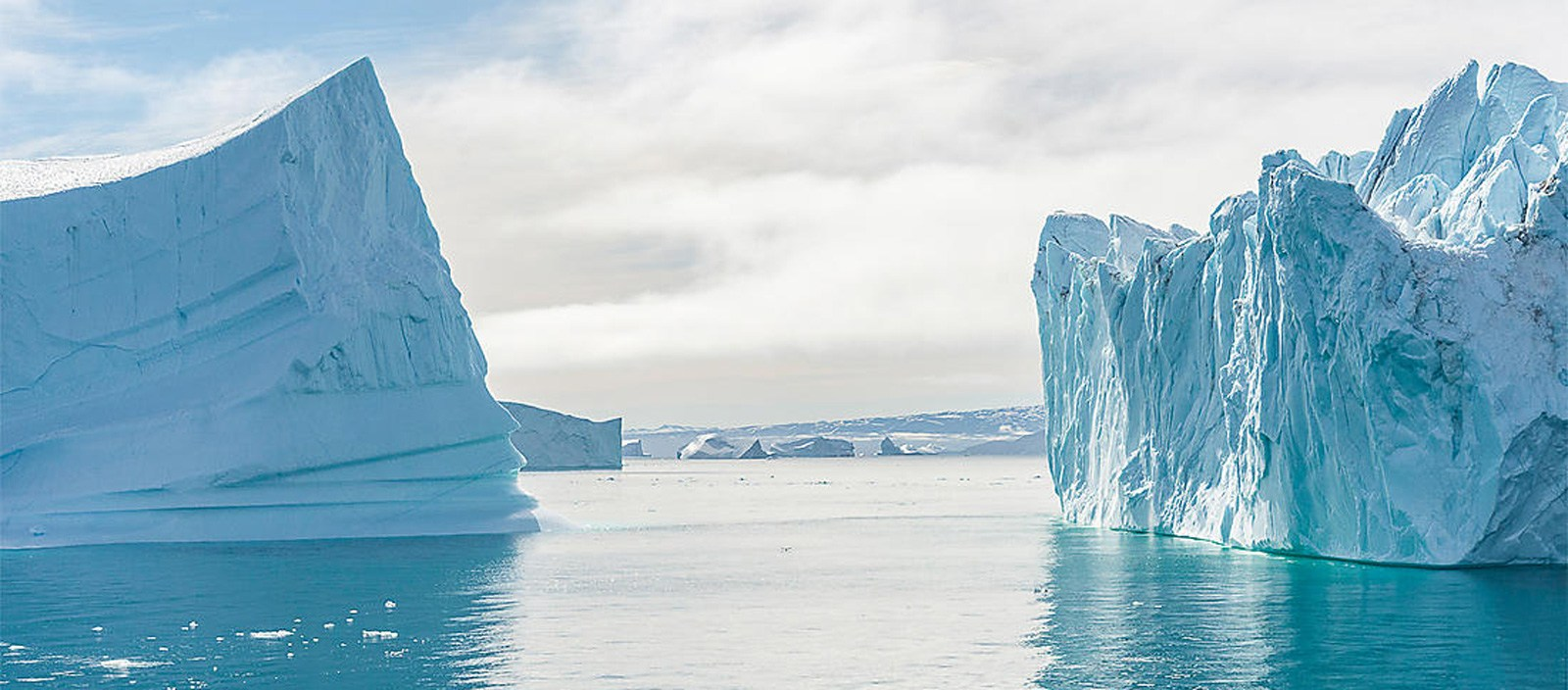 Discovering the Northeast Greenland National Park