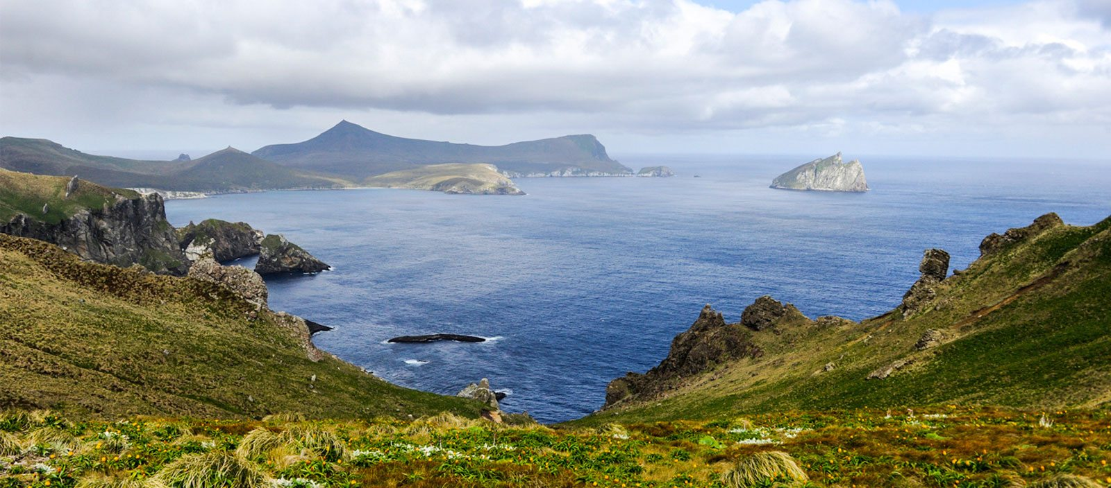 New Zealand's Subantarctic Islands